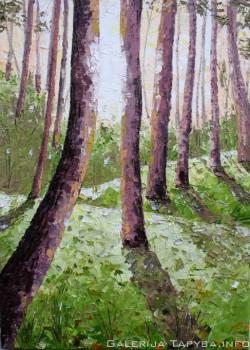 Paslaptingas miškas V